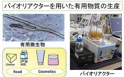 生物反応工学