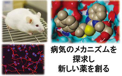 生体情報薬理学