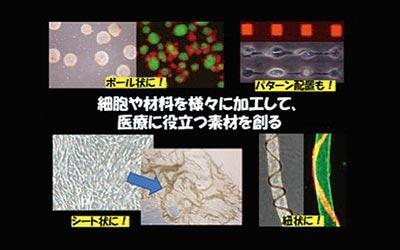 医用材料プロセス工学